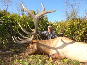 Tharen Soroka 2013 Elk