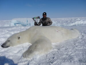 tharen Soroka - polar bear